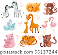 Collection of pairs of animals. Mom and baby. Vector illustration on white background. 55137244