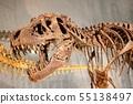 恐龍的威脅 55138497