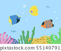 Underwater Seascape with Sea or Ocean Fish Species 55140791