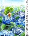 수국과 청개구리 55145025