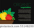 Healthy isolated food icon vegetables on the plate 55148200