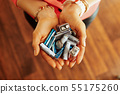 Closeup on different types of batteries in hand of housewife 55175260