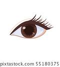 Body parts illustration eyes 55180375