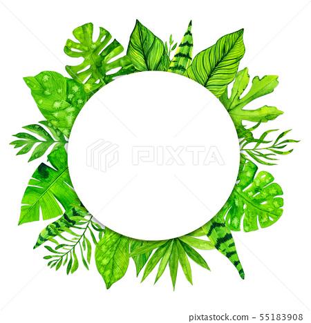 Tropical Exotic Leaves Frame On White Background Stock Illustration 55183908 Pixta Exotic tropical hawaiian palm tree leaves. pixta
