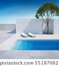 luxury modern backyard with a swimming pool 55187062