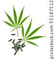Marijuana cannabis leaves and pills. 55187512