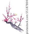 Ume and Uguisu ink painting 55187804
