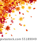 Autumn falling leaves. Nature background with red, orange, yellow foliage. Flying leaf. Season sale 55189049