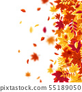 Autumn falling leaves. Nature background with red, orange, yellow foliage. Flying leaf. Season sale 55189050