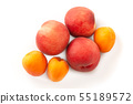 Fresh juicy peaches fruits and ripe apricots isolated on white background. Summer fruit concept 55189572