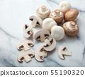 버섯 화이트와 브라운 55190320