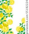레몬 열매와 레몬 잎의 프레임 55192224