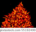 fire flame on black background. fire texture. 55192490