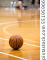 体育馆篮球 55195966