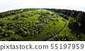 Green lawn little trees grass. Place deforestation for building construction. Nature environment top 55197959