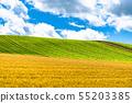 """北海道北海道""""美麗的夏日天空和鄉下瑛山 55203385"""