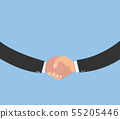 Closeup of businesspeople shaking hands 55205446