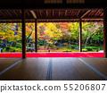圓光寺의 단풍 55206807