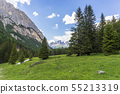 Beautiful view of Val Contrin in June. Dolomites. 55213319