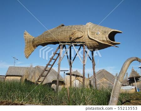 티티카카 호수, 토토라로 만든 물고기 55213553