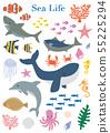 海洋生物海生物例證集合 55225294