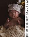 剛出生的嬰兒 55228512