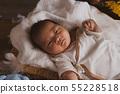 刚出生的婴儿 55228518
