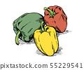 손으로 그린 일러스트 소재 : 야채, 파프리카, 피망 55229541