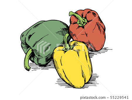 手繪插畫素材:蔬菜,辣椒粉,辣椒 55229541