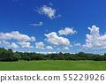 여름 하늘과 녹지 (배경 자료) 55229926