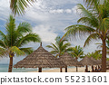 Straw parasols in between of palm trees 55231601
