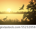 Realistic illustration of wetland landscape with 55232056