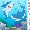 Shark topic image 4 55232402