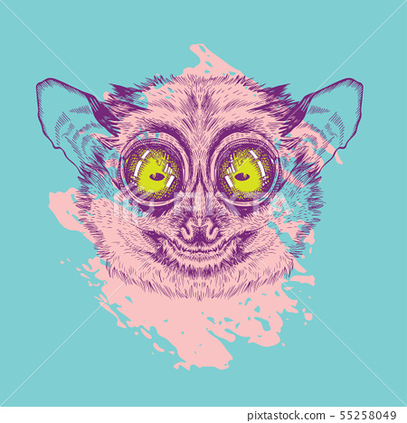 Vector Image Of Lemur Lory Painted In Pink On Stock Illustration 55258049 Pixta