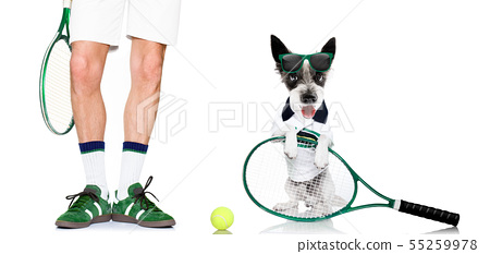 tennis dog  with owner and ball 55259978