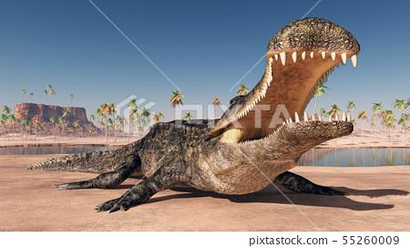 Prehistoric crocodile Sarcosuchus 55260009