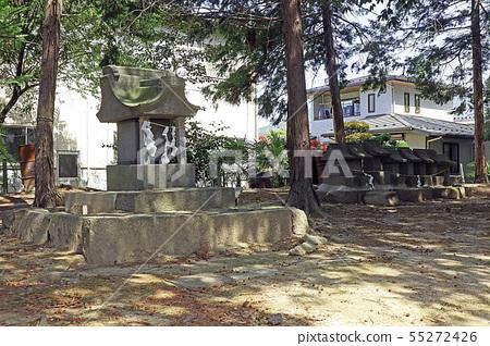 Tamamo Shrine 55272426