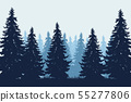 Vector realistic illustration of coniferous forest 55277806