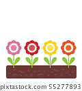flowerbed with colorful flowers with green leaves 55277893