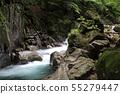 Nishizawa Valley Frog Rock 55279447