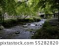 Omiya River flowing through Hiyoshi Taisha 55282820