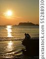 江之島的夜景 55288930