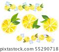 레몬 바구니 55290718