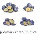 Fresh juisy blueberries isolated on white 55297126