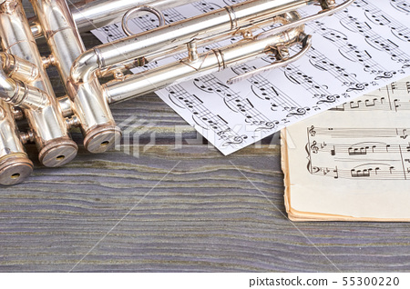 Musical instrument on wooden background. 55300220