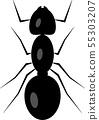 개미 55303207