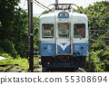 伊豆急(100系列)火车 55308694
