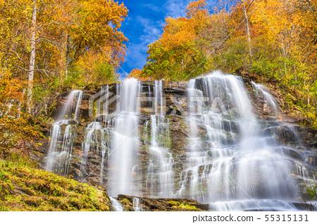Amicalola Falls, Georgia, USA 55315131
