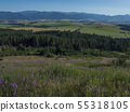 Mountain valley with meadow, forest, green fileds and with blue misty slopes of low tatra mountais 55318105
