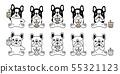 개, 강아지, 프렌치 55321123